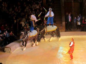 Circo di Kiev №15787