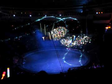 Circus Arena №15807