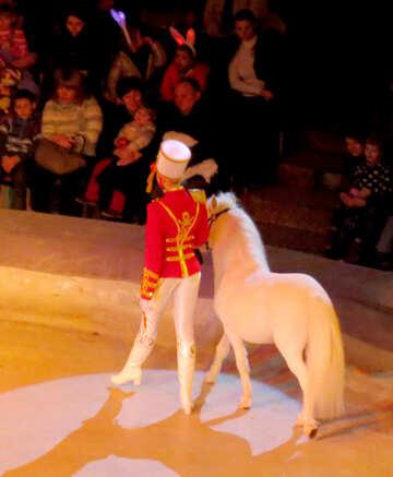 Пони - цирковой артист №15779