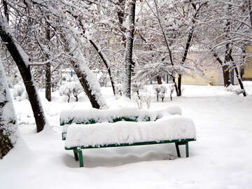Winter bench №15574
