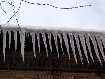 Dangerous icicles №15590