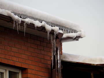 Icicles on drainpipe №15503
