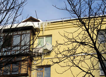 Icicles №15706