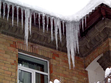 Large icicles №15583