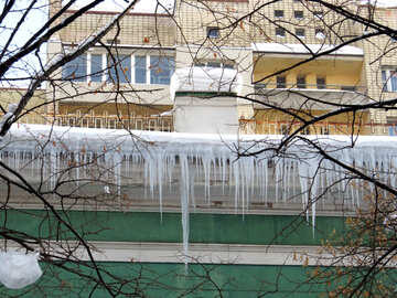 Large icicles №15721