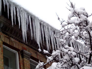 Long icicles on the roof №15591