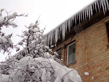 Many icicles on the roof №15592