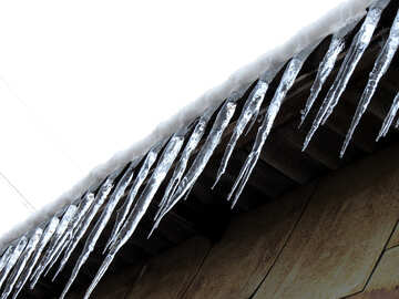 Icicles from the roof №15516