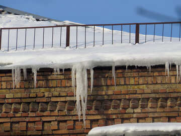Snowy icicles №15731