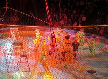 Vertretung im Zirkus №15840