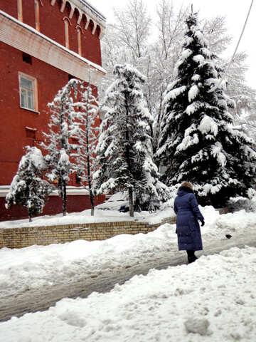 Peatones en invierno №15614