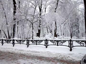 Snow City Park №15605