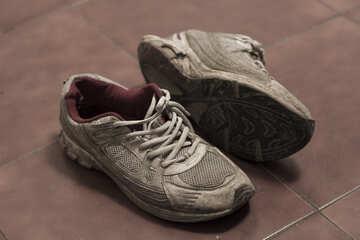 Torn sneakers №15440