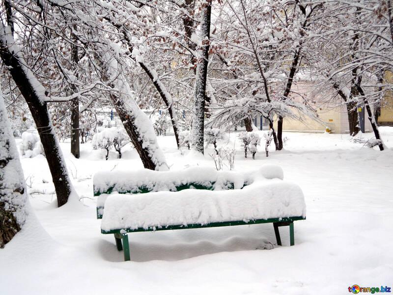 Winter bench №15574