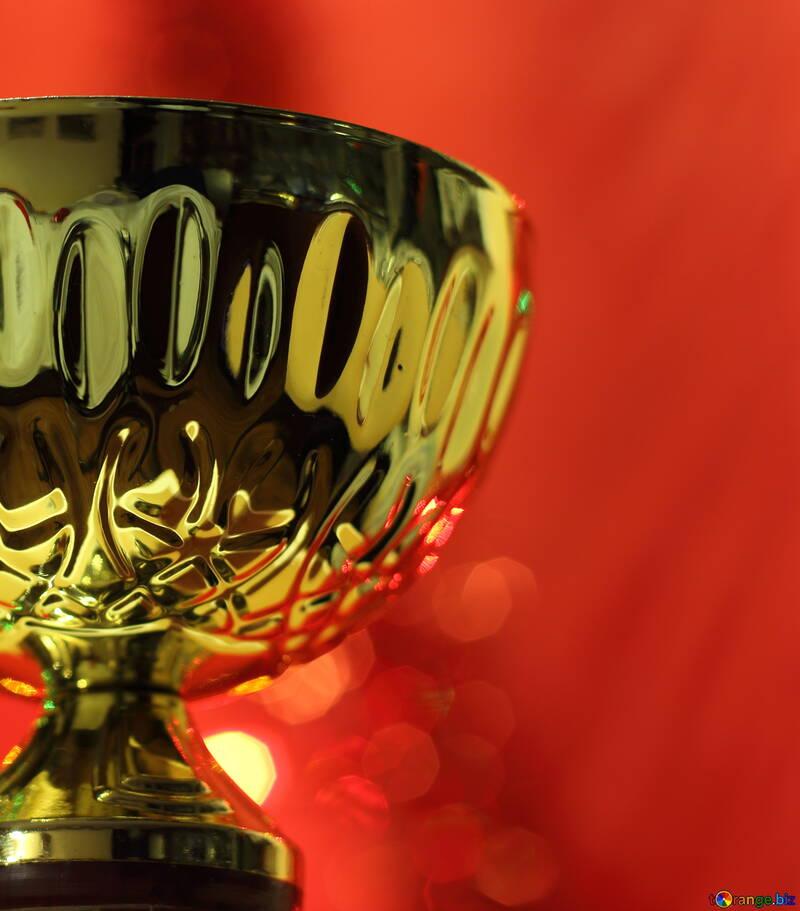 Sports prize №15016