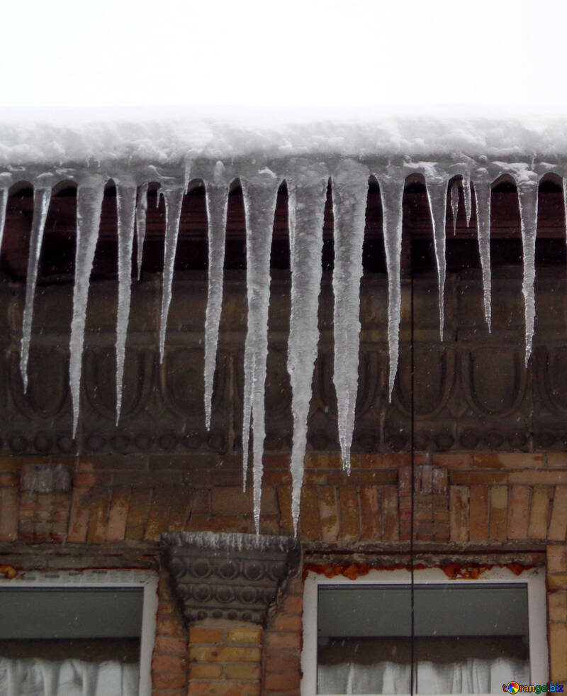 Large icicles №15582