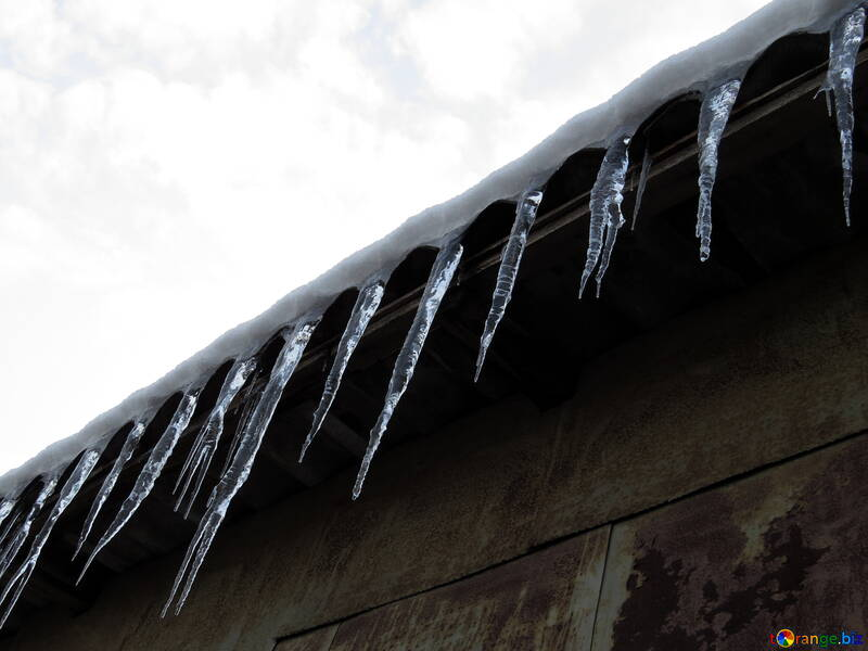 Rare icicles №15535