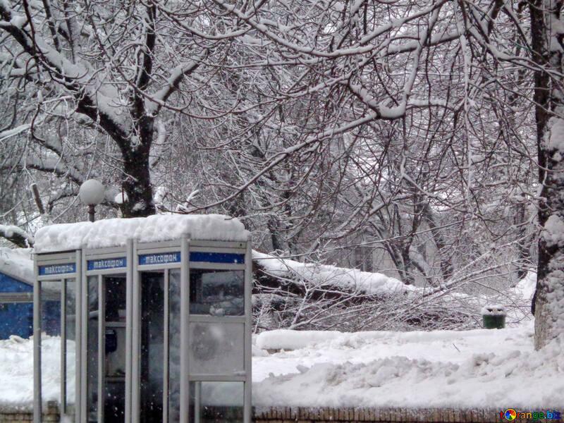 Winter elements №15623