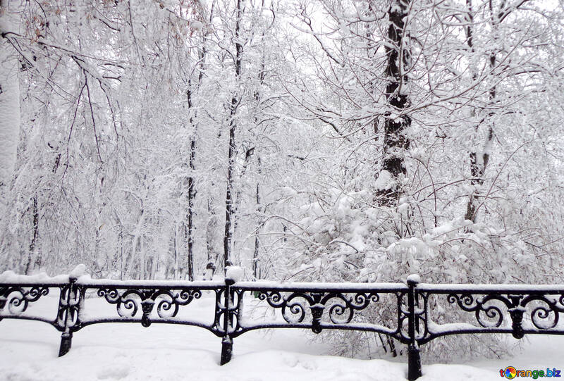 Park in winter with snow piled №15607