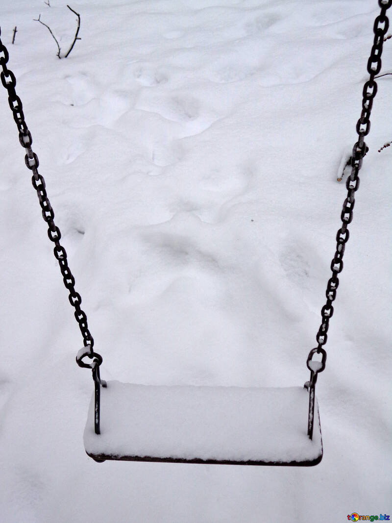 Winter swings №15562