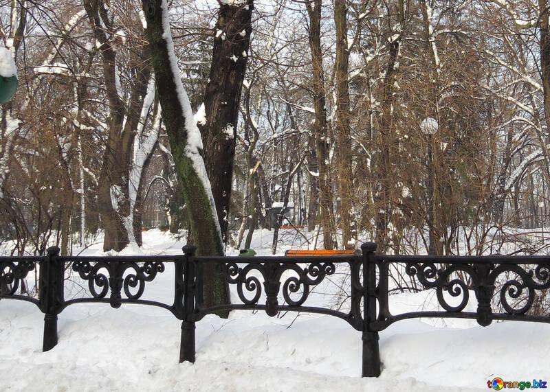 Winter Park №15692