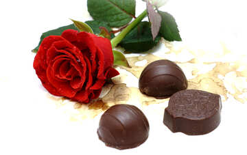 Chocolates candy and rose №16868