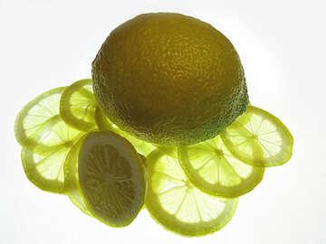Lemon on the desktop №16138