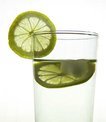 Lemonade №16122