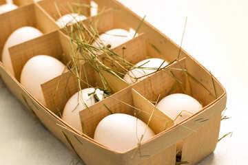 Eggs №16490
