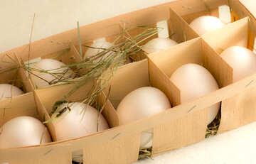 Tray of eggs №16495