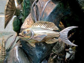 Golden fish №16564