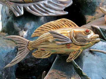 Goldfish №16562
