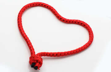 A love knot №16382