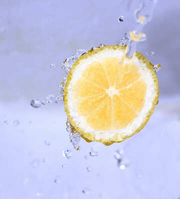 Fresh lemon №16176