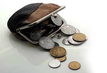 Poor man`s purse №16103