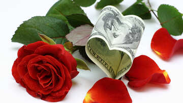 Dollar rose heart №16841