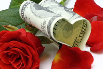 Rose and money №16840