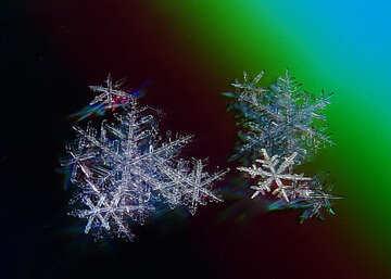 Snowflakes №16978