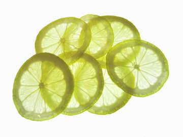 Texture transparent lemon №16152