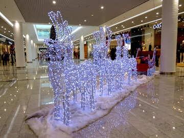 Santa`s Reindeer №16243