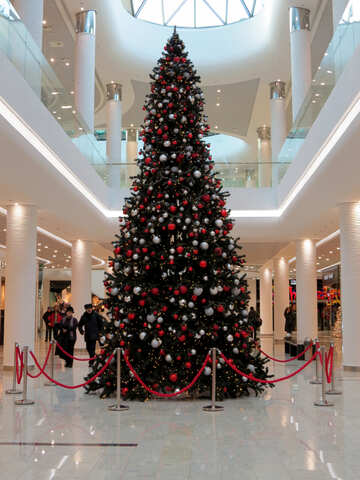 Christmas tree in the store №16233