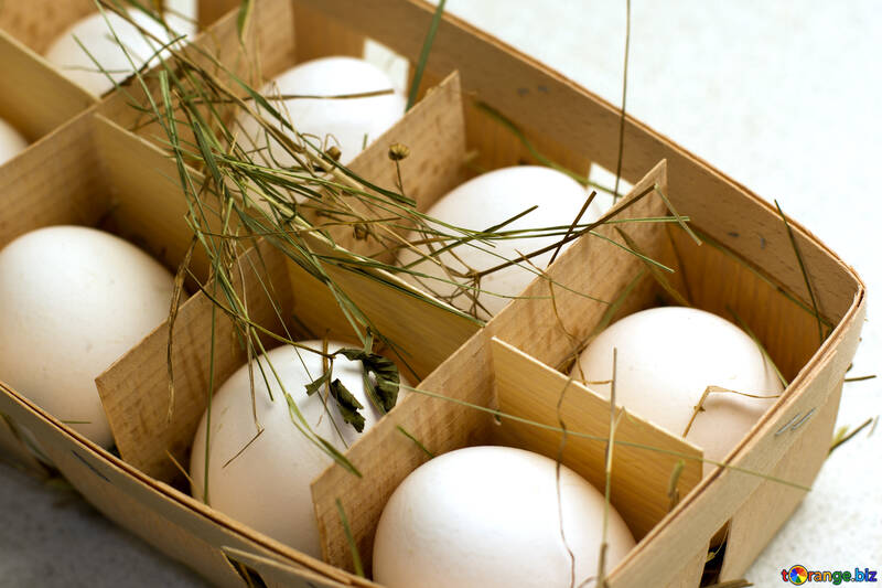 Homemade egg №16493