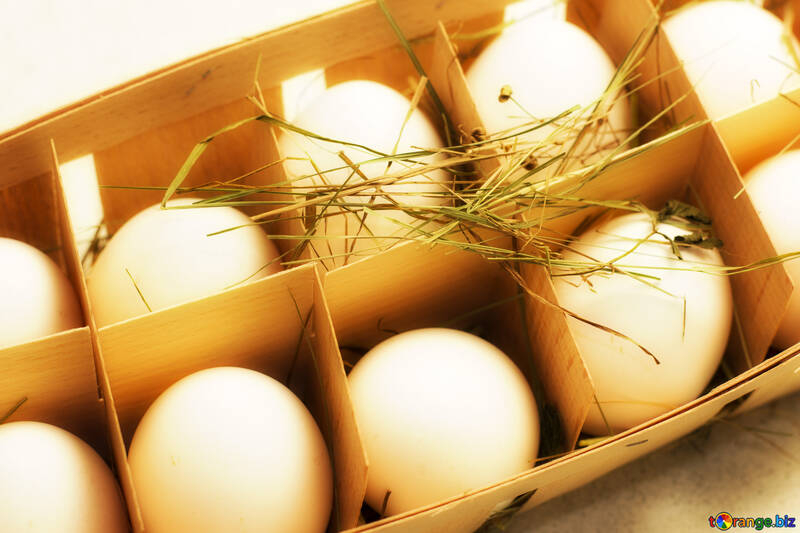 Eggs in tray №16485