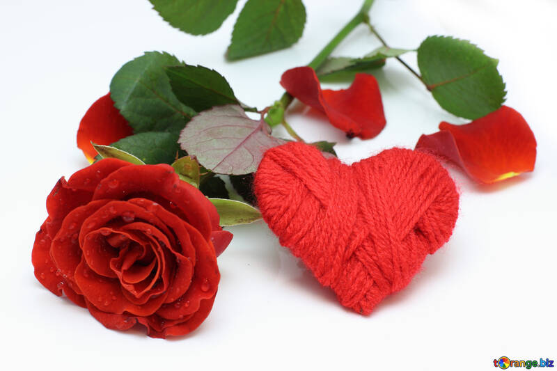 Rose and Heart gift №16859