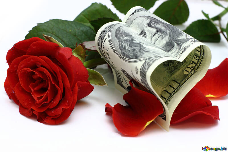 Money and flowers №16838