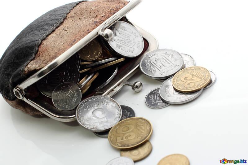 Coin purse №16105