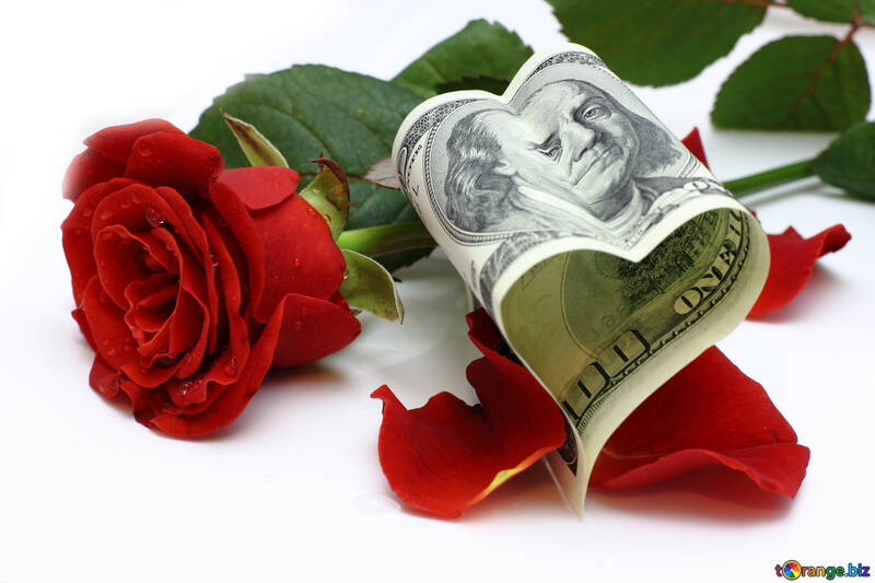 Heart of the dollar and rose №16836