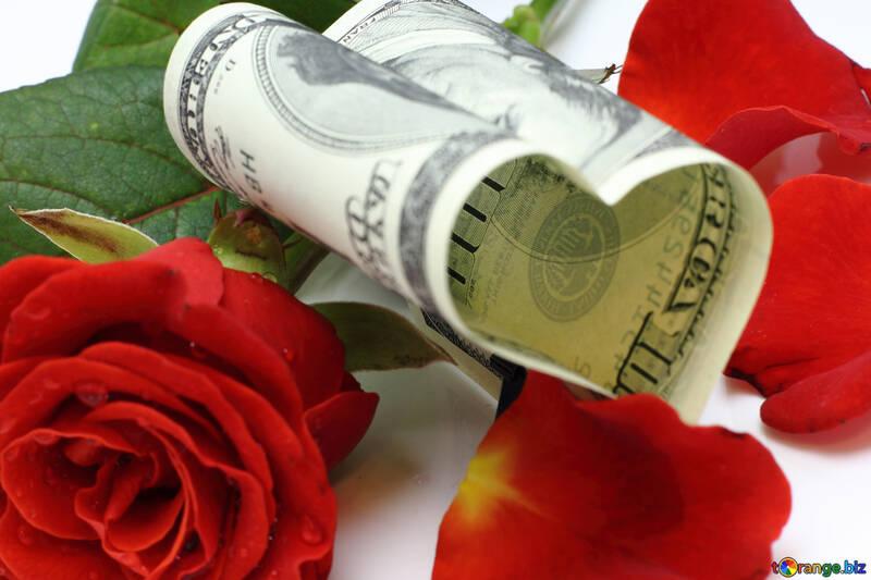 Rose como regalo №16840