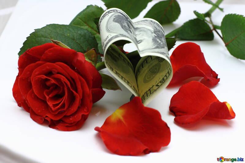 Herz mit Rose aus Geld №16839