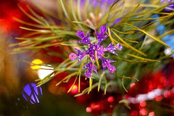 Christmas snowflake №17982